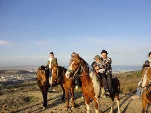Конные прогулки в Феодосии - цены 2021